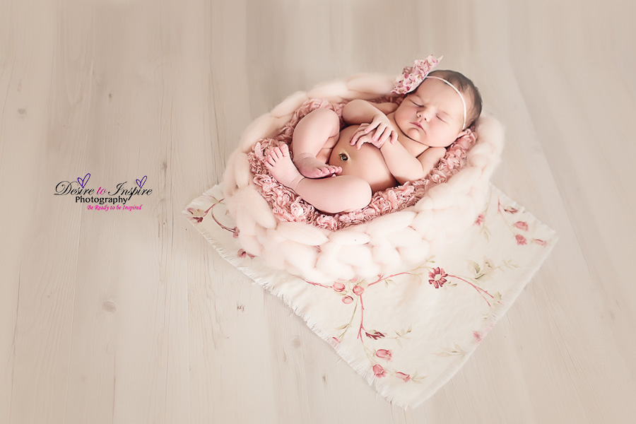 Brisbane Newborn Photographer 11022014 (3)