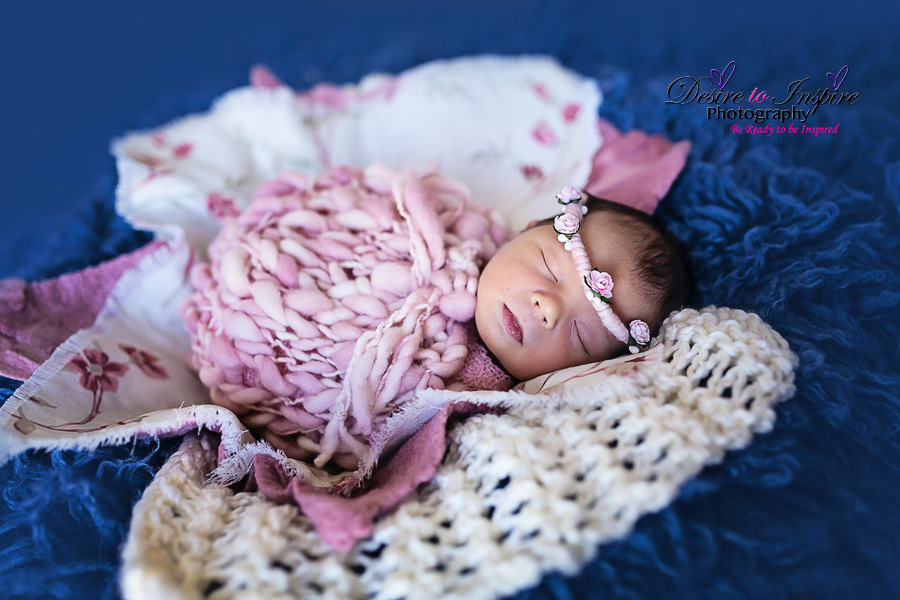 Brisbane_Newborn_Photography_10232014 (2)