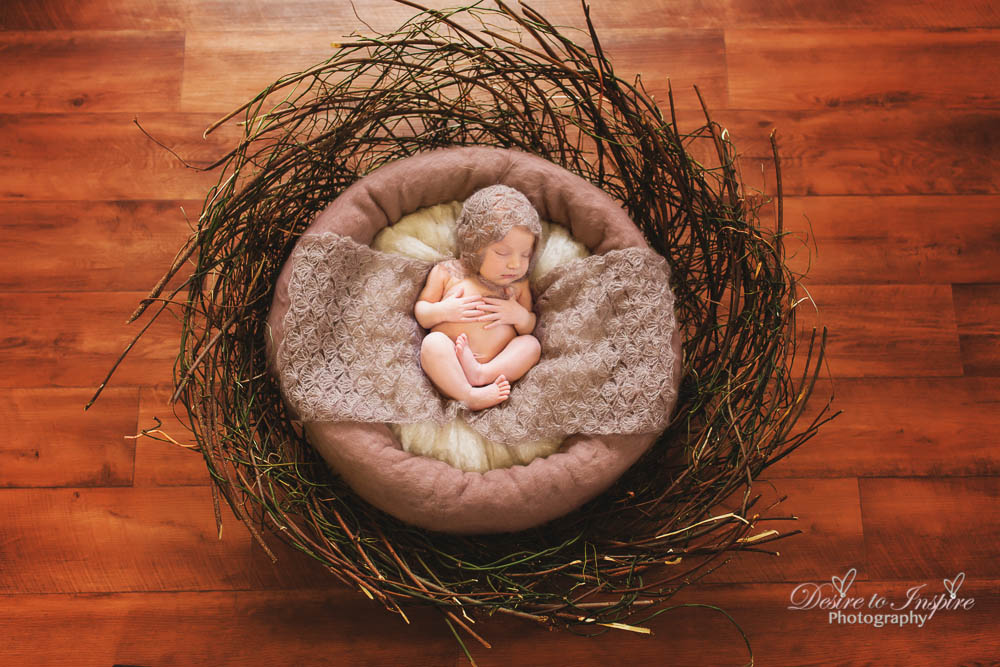 Brisbane Newborn Photography-