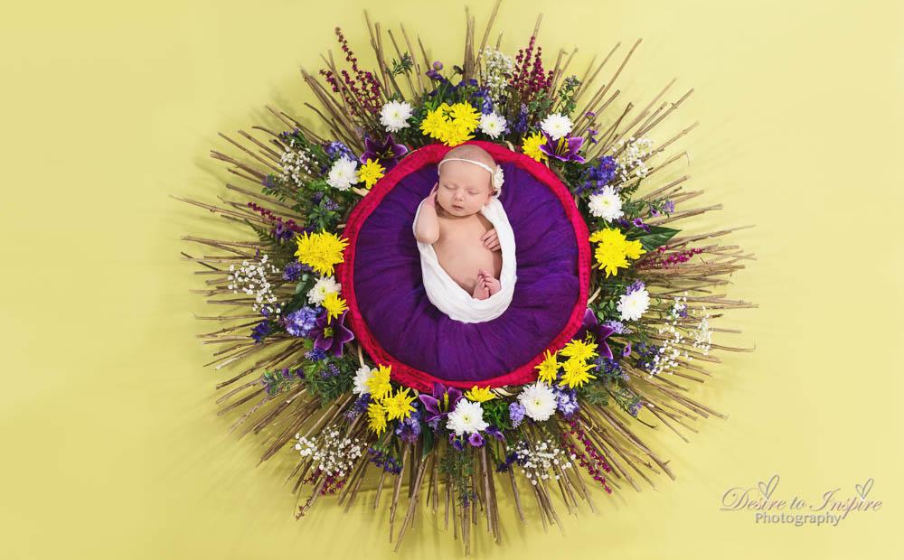 Brisbane Newborn Photography-3903