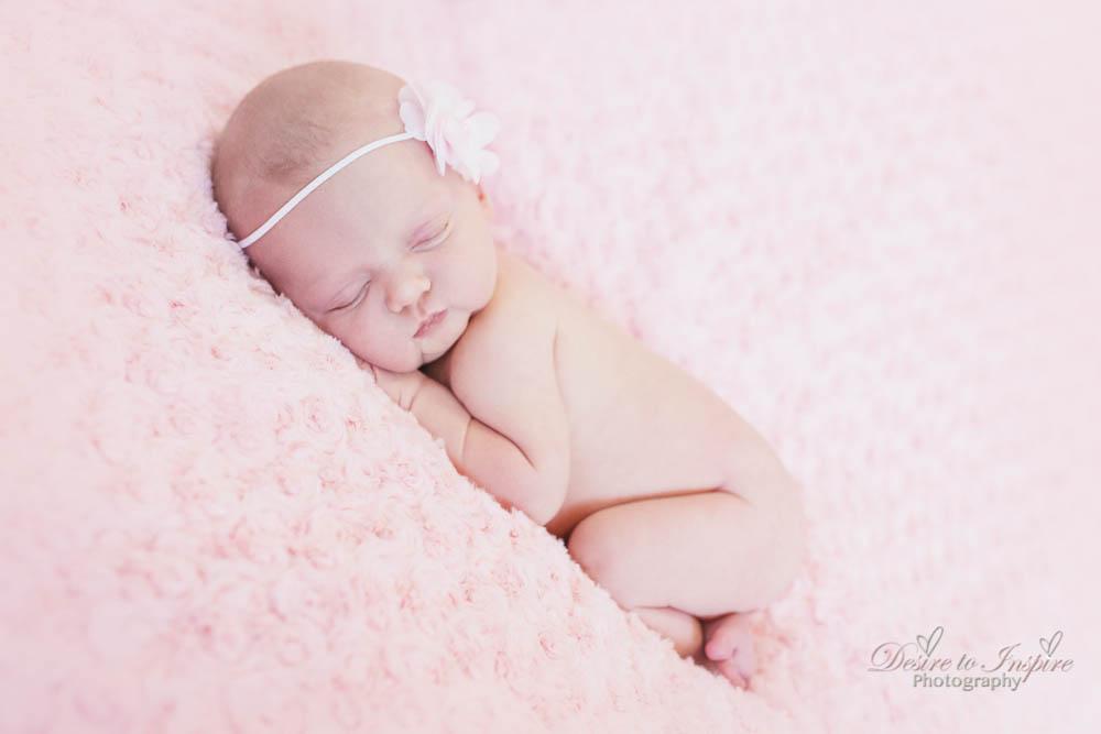 Brisbane Newborn Photography-4169