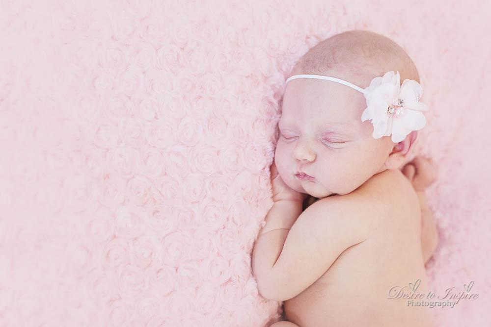 Brisbane Newborn Photography-4175
