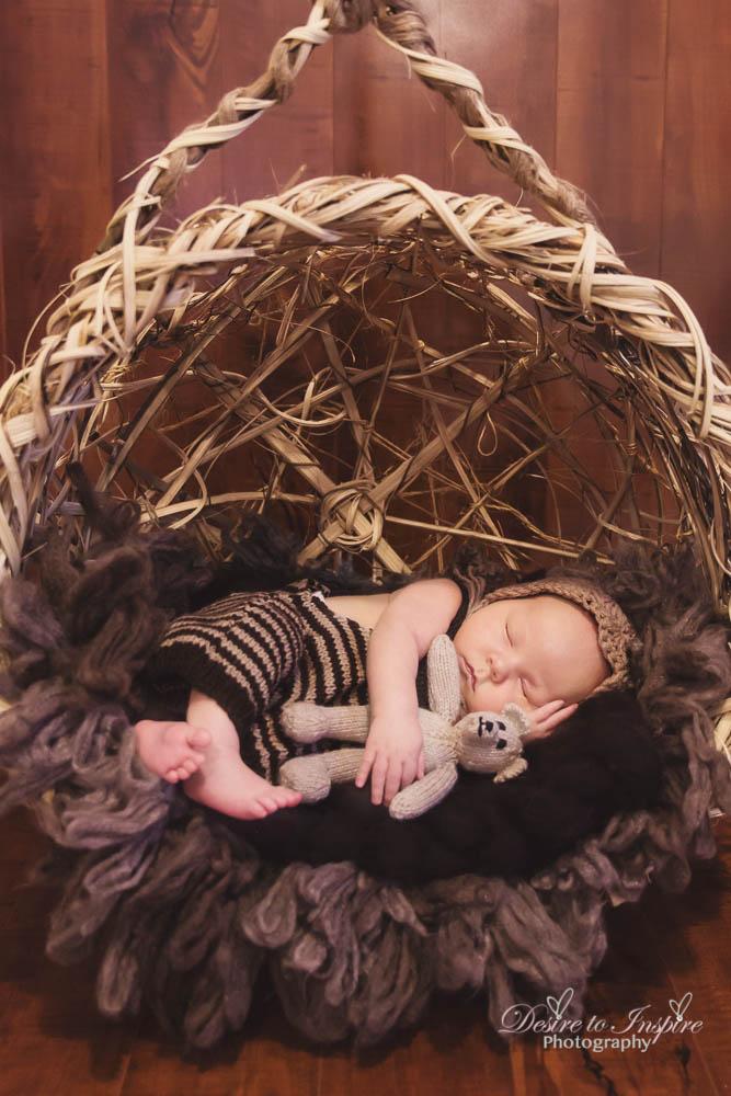Brisbane Newborn Photography-4349