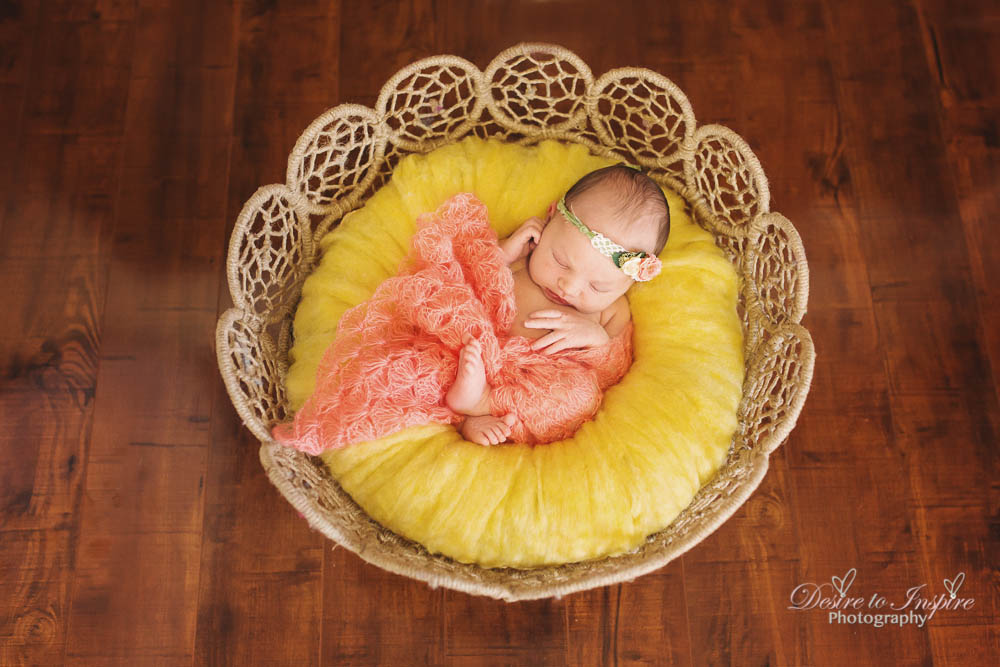 Brisbane Newborn Photography-4932