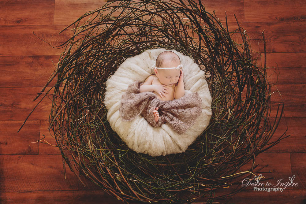 Brisbane Newborn Photography-5032