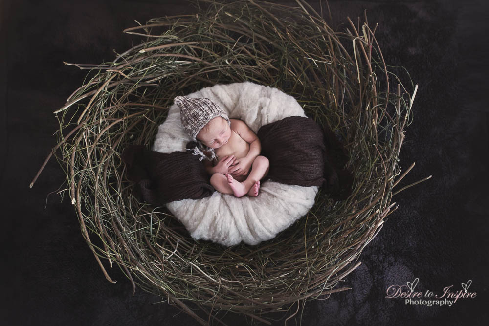 Brisbane Newborn Photography-5864