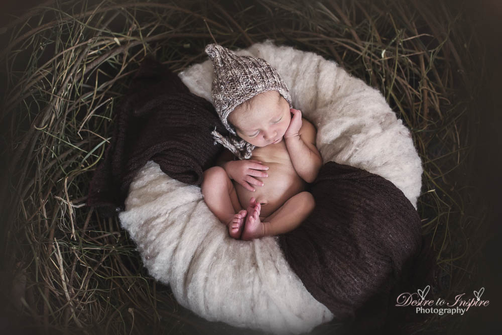 Brisbane Newborn Photography-5867
