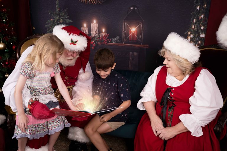 , Santa Photo Stats, Brisbane Birth Photography